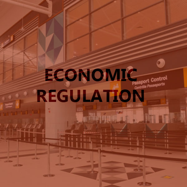 Ecomonic Regulation